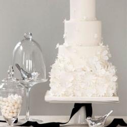 White Wedding Cakes Gallery Weddinggawker